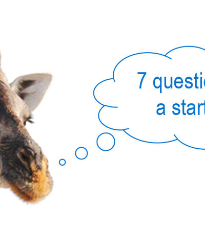 7 questions to a start-up: DXMarkets