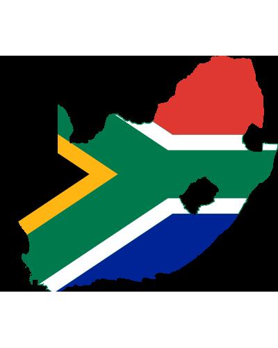 Come far ripartire l'economia sudafricana – Mercati nota settimanale