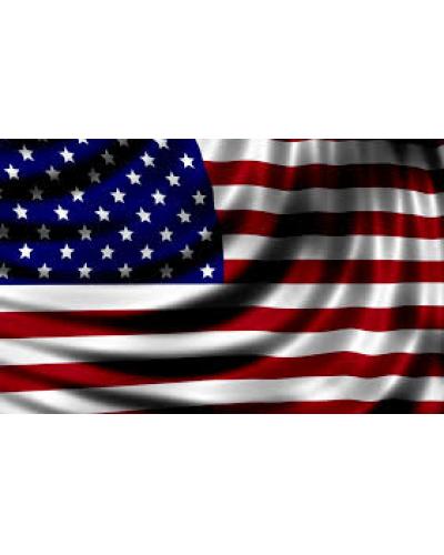 USA: proseguirà il ciclo in espansione?